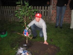 Betram beim Pflanzen seines Kirschbaums